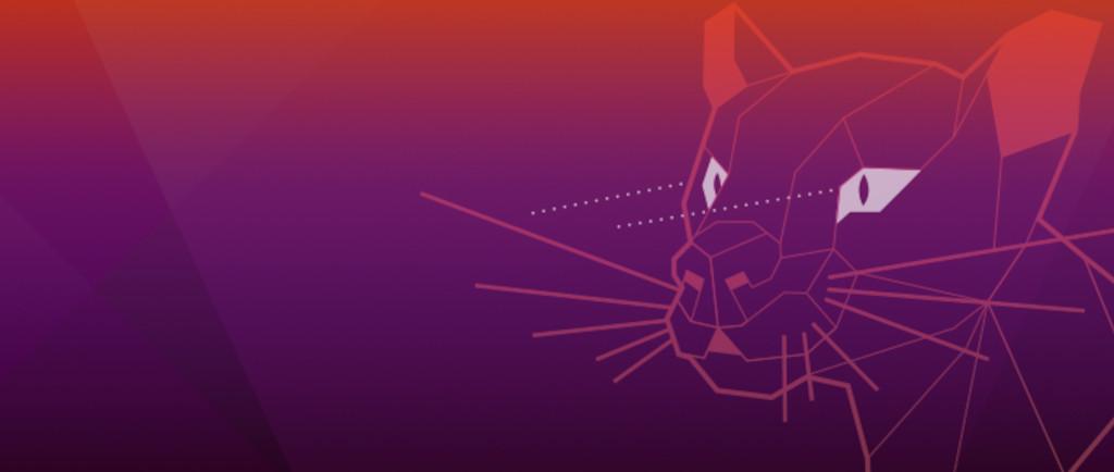 Ubuntu 20.04 Focal Fossa